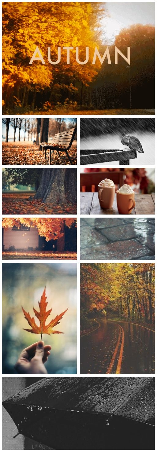 What Autumn is