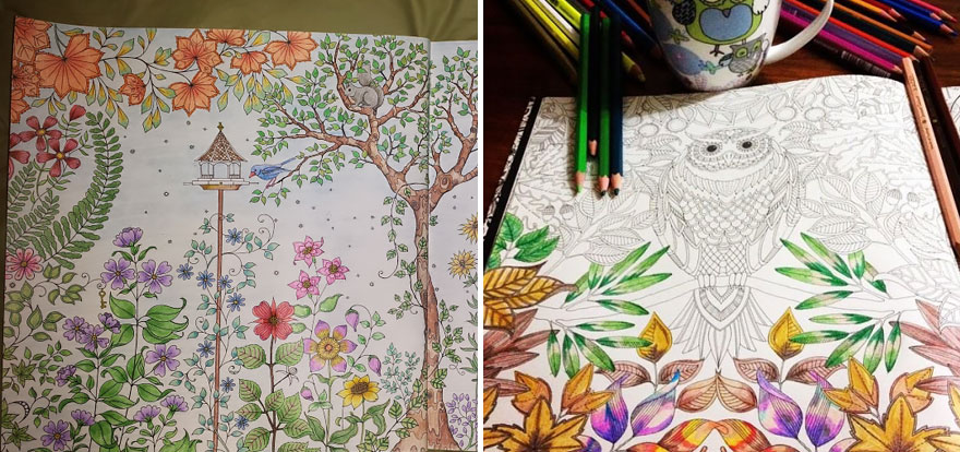 Coloring-books-for-adults-johanna-basford-12__880 Quaintrelleoquist
