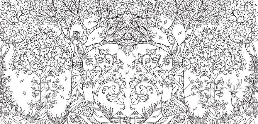 Coloring Books For Adults Johanna Basford 9 880