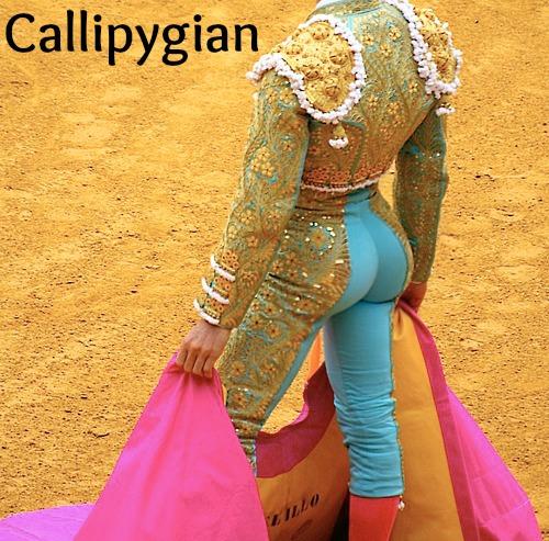 Callipygian